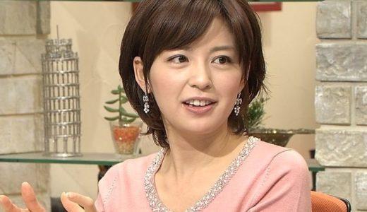 【画像】中野美奈子の旦那は戸谷祐樹!離婚危機を招いた嫁姑問題とは